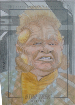 Roy Cover Sketch - Neelix
