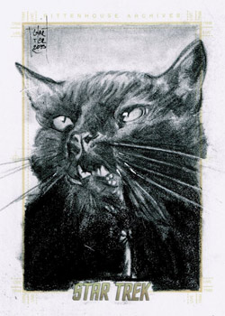 François Chartier Sketch - Cat from Catspaw